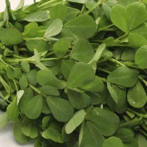 fenugreek-leafs