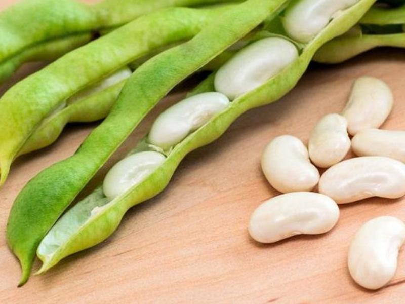 White Kidney Beans Bionut Elixir